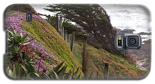 Coastal Windblown Trees Galaxy S5 Case