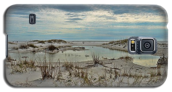 Galaxy S5 Case featuring the photograph Coastland Wetland by Renee Hardison