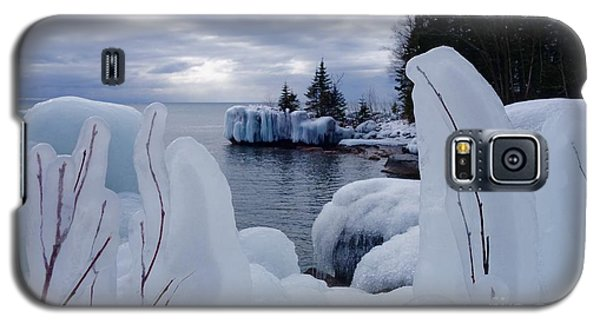 Coated With Ice Galaxy S5 Case by Sandra Updyke