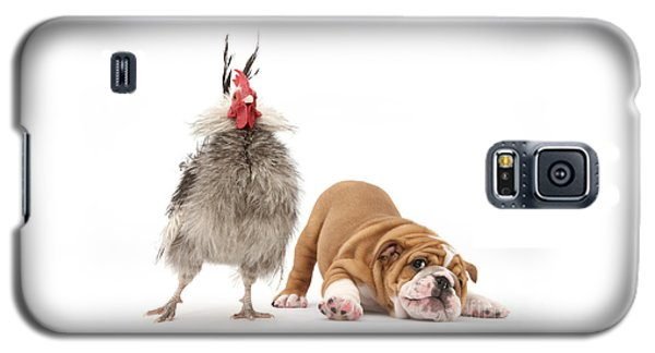 Cock N Bull Galaxy S5 Case