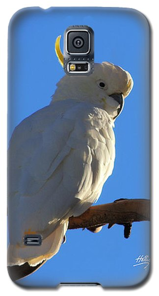 Cockatoo Galaxy S5 Case