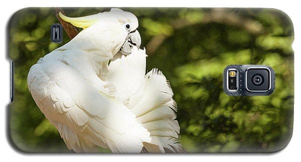Cockatoo Preaning Galaxy S5 Case