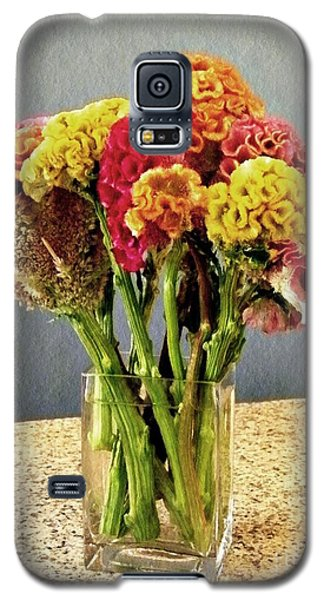Galaxy S5 Case featuring the photograph Cockscomb Bouquet by Sarah Loft