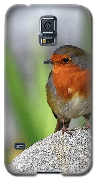 Cocky Robin Galaxy S5 Case