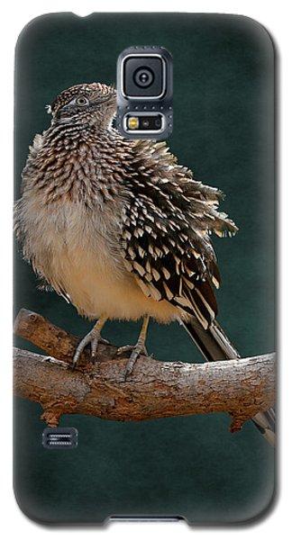 Cocoa Puffed Cuckoo Galaxy S5 Case
