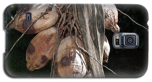 Coconut 1 Galaxy S5 Case