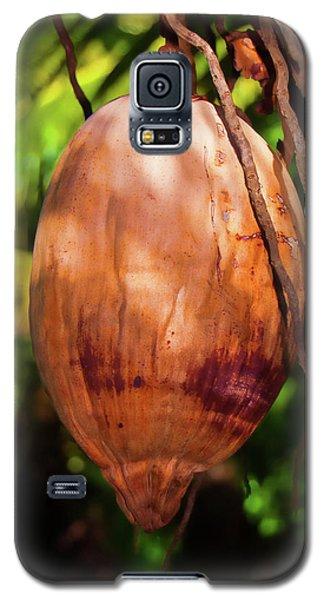Coconut 2 Galaxy S5 Case