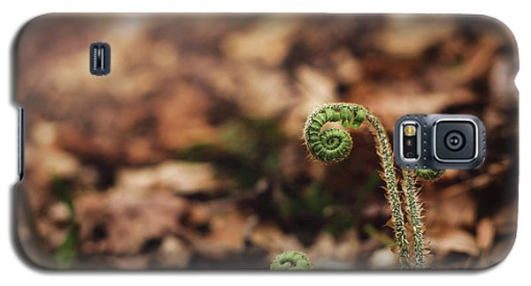 Coiled Fern Among Leaves On Forest Floor Galaxy S5 Case