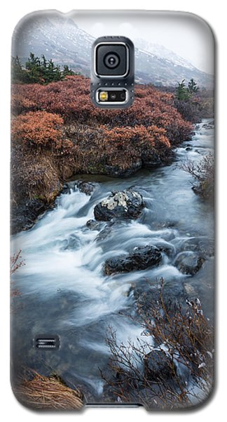 Cold Creek In Autumn Galaxy S5 Case