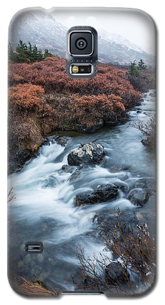 Cold Creek In Autumn Galaxy S5 Case