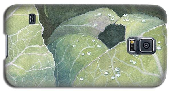 Cold Crop Galaxy S5 Case
