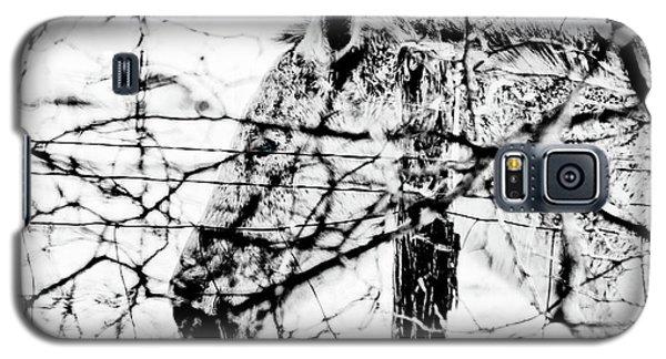 Cold Horse Galaxy S5 Case