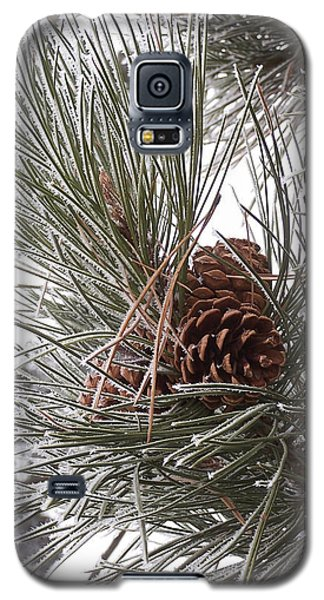 Cold Pine Galaxy S5 Case