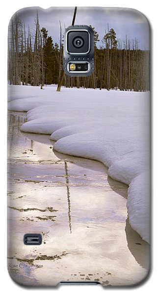 Cold Reflections Galaxy S5 Case