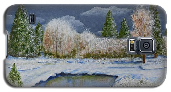 Galaxy S5 Case featuring the painting Cold Sky 1 by Melvin Turner