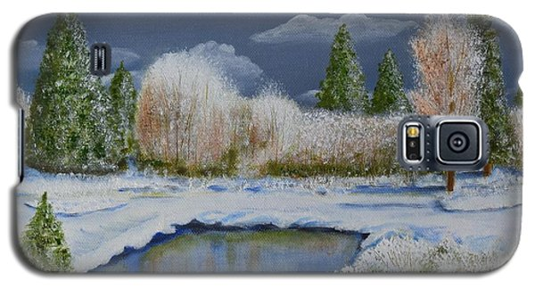 Cold Sky 1 Galaxy S5 Case by Melvin Turner