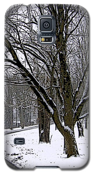 Galaxy S5 Case featuring the photograph Cold Winter Day by Skyler Tipton