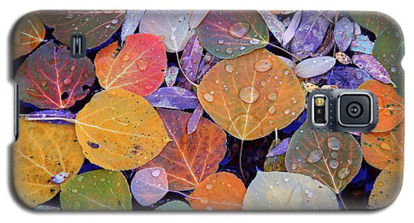 Collage Of Aspen Leaves At Mcgee Creek In The Eastern Sierras Galaxy S5 Case