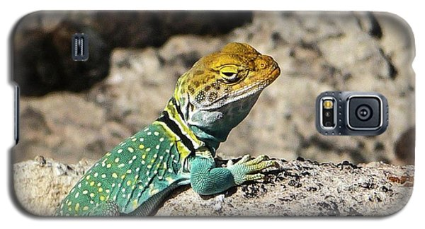 Collared Lizard Galaxy S5 Case