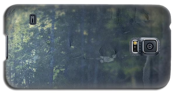 Galaxy S5 Case featuring the photograph Collect by Mark Ross