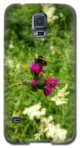 Collecting Honey  Galaxy S5 Case