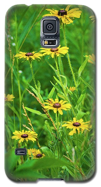 Galaxy S5 Case featuring the photograph Collection In The Clearing by Bill Pevlor
