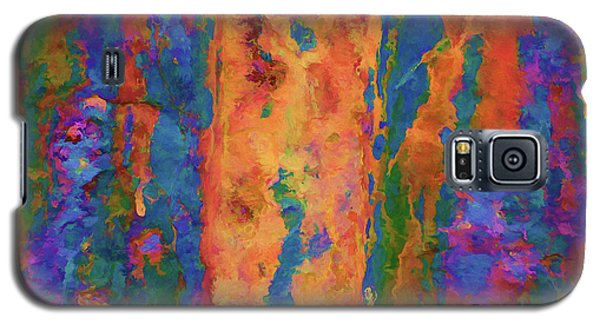 Galaxy S5 Case featuring the photograph Color Abstraction Lxvi by David Gordon