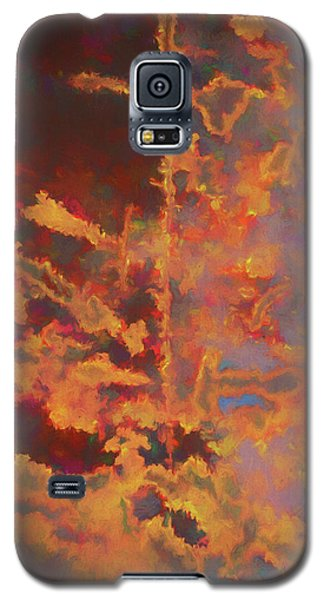 Color Abstraction Lxxi Galaxy S5 Case by David Gordon