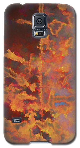 Color Abstraction Lxxi Galaxy S5 Case
