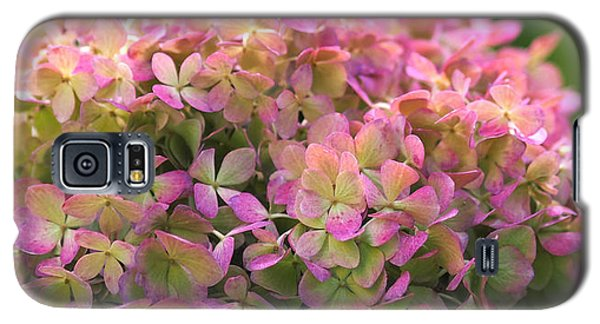 Color-changing Little Lime Hydrangea Galaxy S5 Case