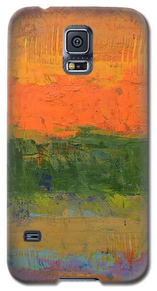 Color Collage Four Galaxy S5 Case by Michelle Calkins