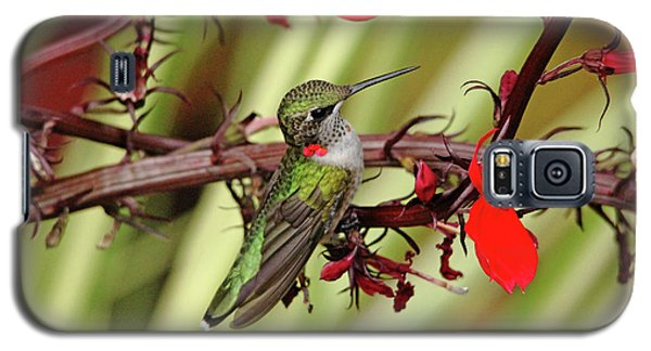 Color Coordinated Hummer Galaxy S5 Case by Debbie Oppermann