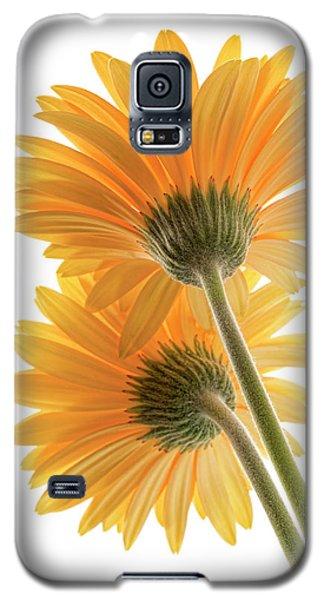 Color Me Happy Galaxy S5 Case