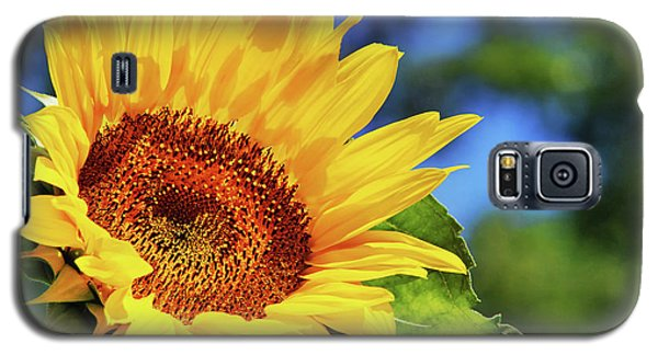 Color Me Happy Sunflower Galaxy S5 Case by Christina Rollo
