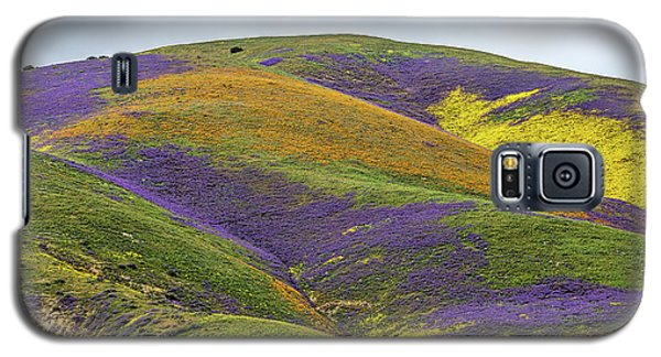 Galaxy S5 Case featuring the photograph Color Mountain I by Peter Tellone