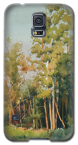 Galaxy S5 Case featuring the painting Color Of Light by Helal Uddin