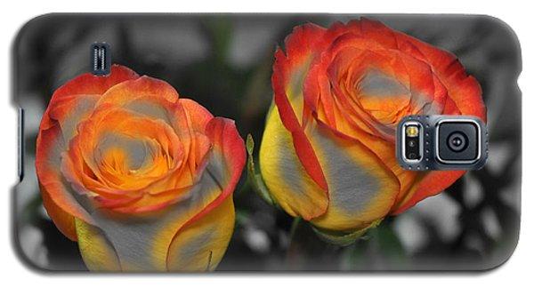Color Tips Galaxy S5 Case