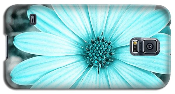 Color Trend Blue Blossom Galaxy S5 Case