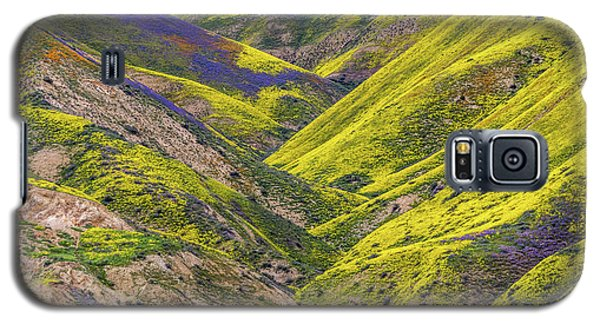 Galaxy S5 Case featuring the photograph Color Valley by Peter Tellone