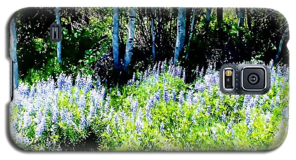 Colorado Apens And Flowers Galaxy S5 Case by Joseph Hendrix