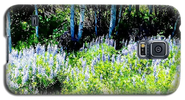 Colorado Apens And Flowers Galaxy S5 Case