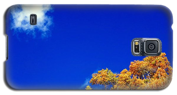 Galaxy S5 Case featuring the photograph Colorado Blue by Karen Shackles