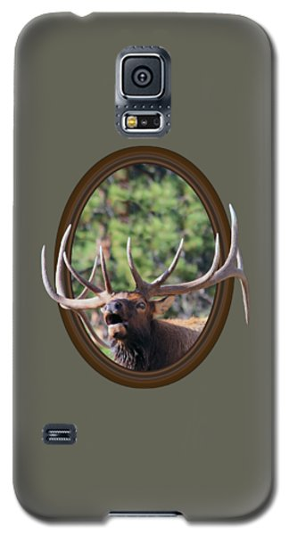 Galaxy S5 Case featuring the photograph Colorado Bull Elk by Shane Bechler
