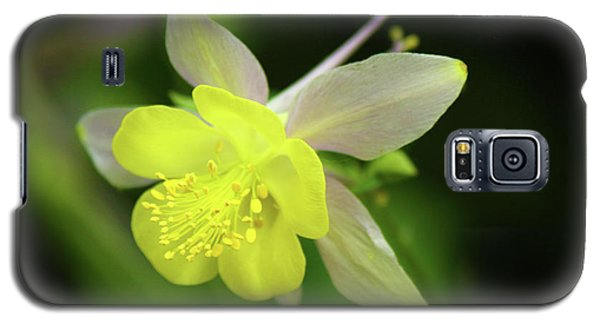 Galaxy S5 Case featuring the photograph Colorado Columbine by Marie Leslie