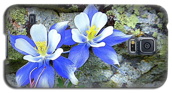 Galaxy S5 Case featuring the photograph Colorado Columbines by Karen Shackles