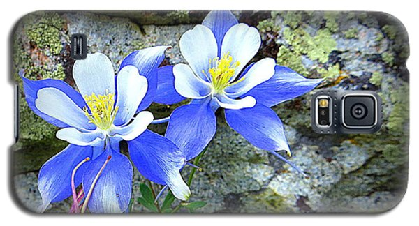 Colorado Columbines Galaxy S5 Case by Karen Shackles