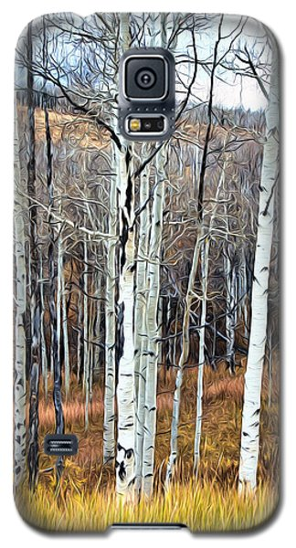 Colorado Fall Aspen Galaxy S5 Case by James Steele