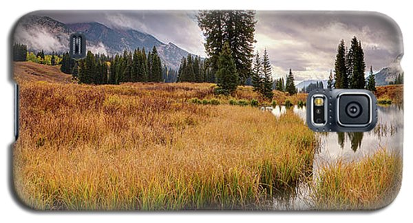Colorado Fall Colors 3  Galaxy S5 Case