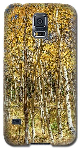 Colorado Gold Galaxy S5 Case