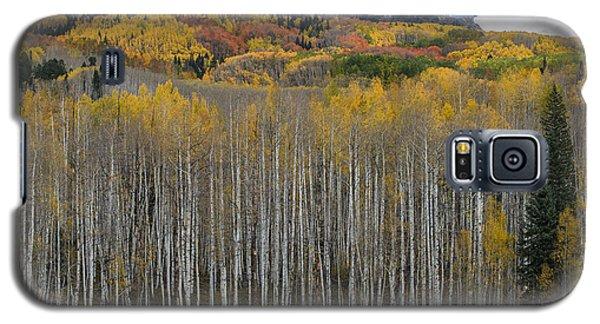 Colorado Splendor Galaxy S5 Case by Gary Lengyel